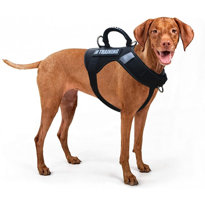 LovinPet Large Dog Harness No Pull Dog Harness Adjustable Easy Control for Small Medium Large Dogs